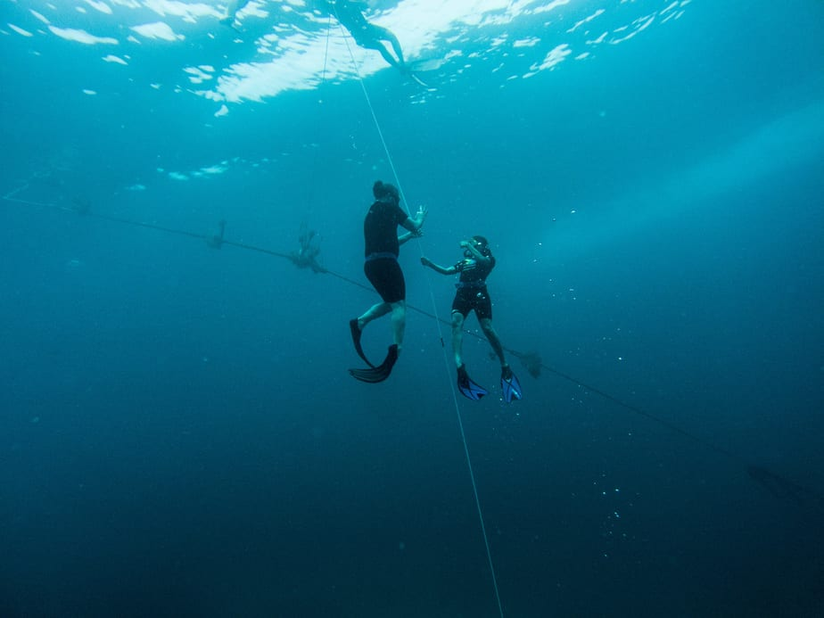 how to correctly weight yourself for freediving and spearfishing