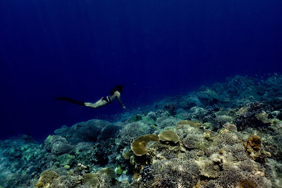 freediving contractions