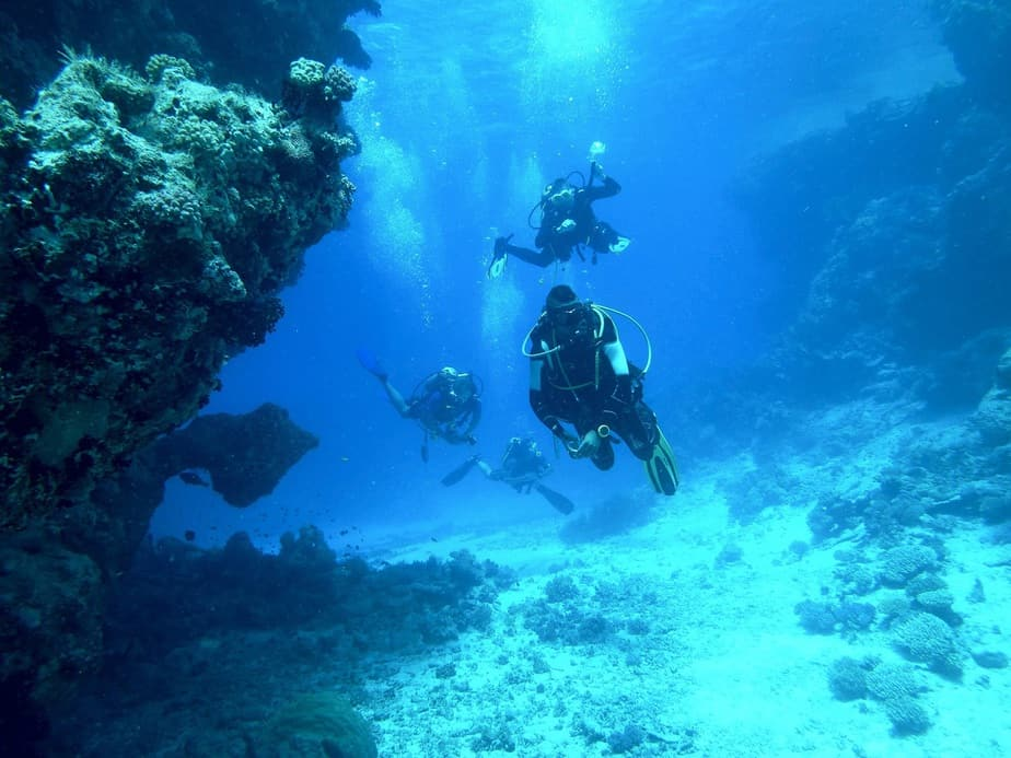 diving as a group