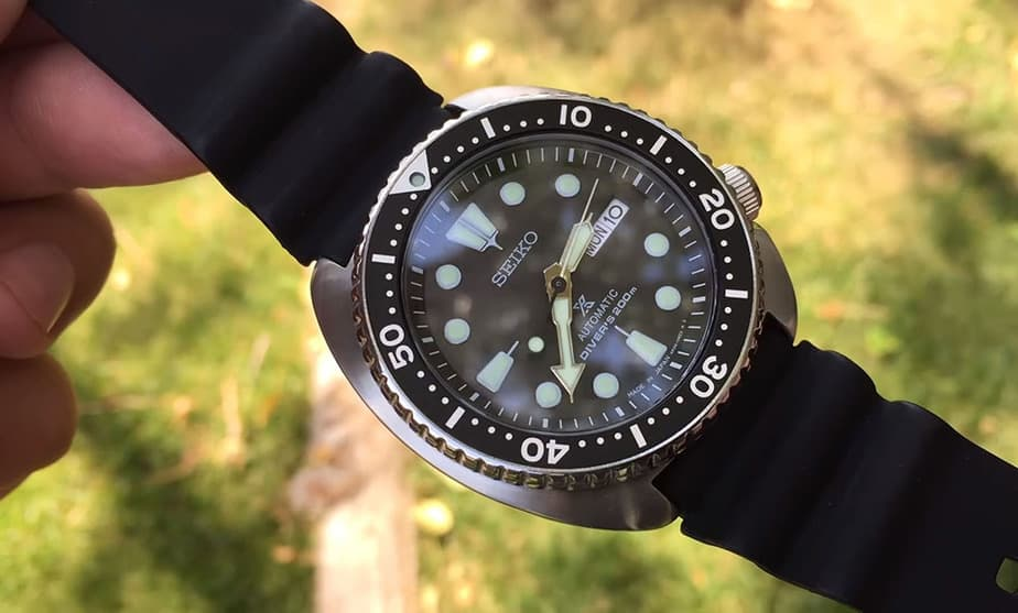 turtle dial