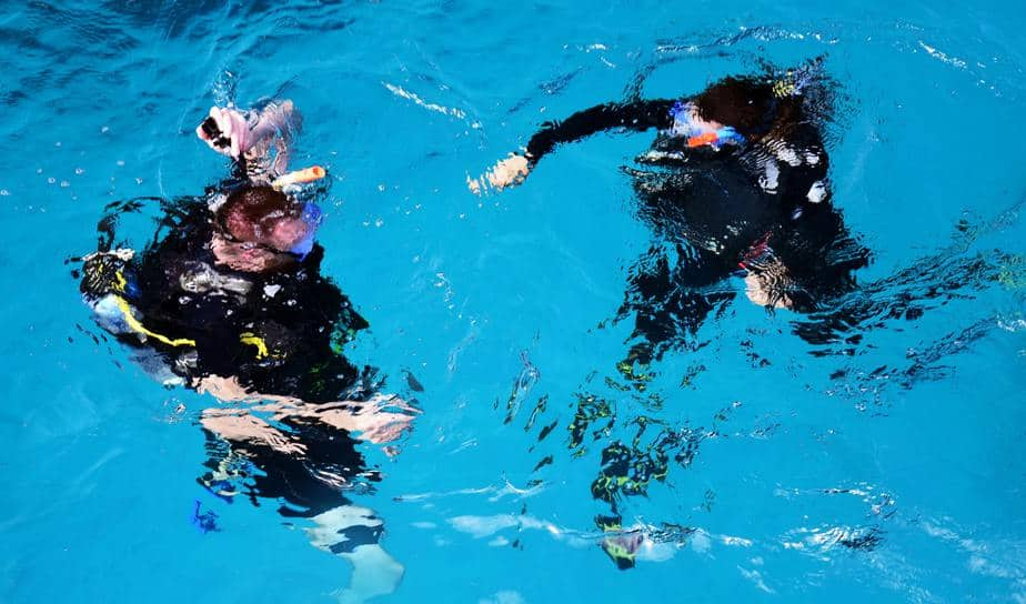 dive with a buddy