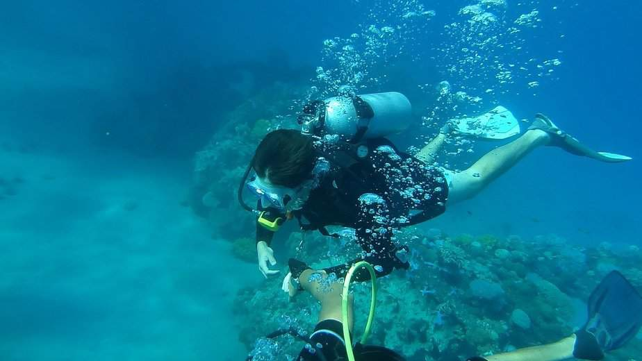 can you scuba dive without a license certification