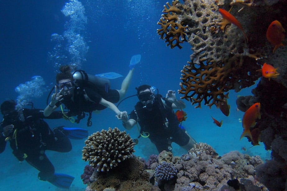 how to stay with your dive buddy
