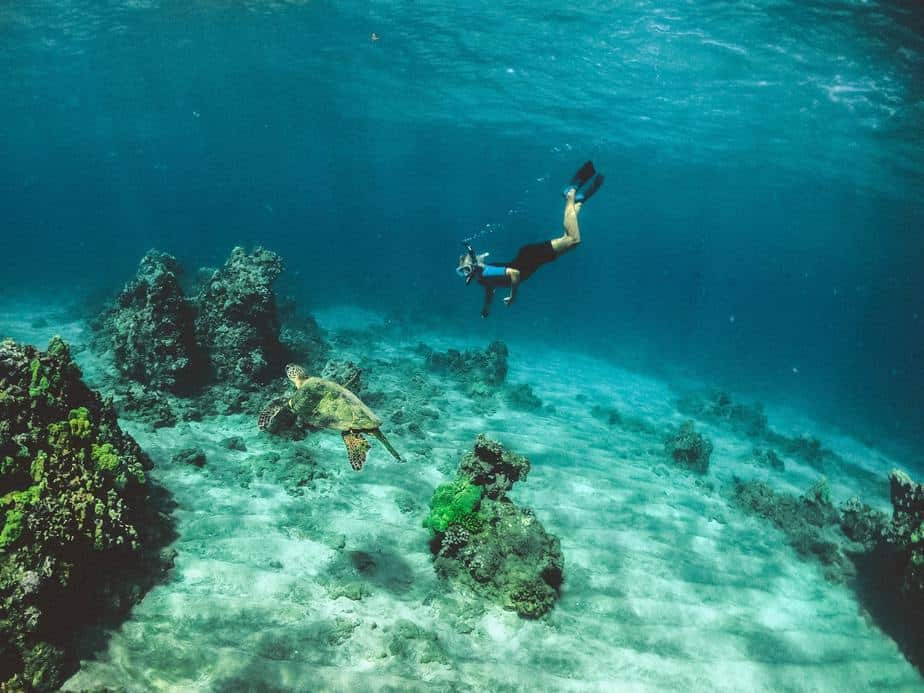 does snorkeling get boring
