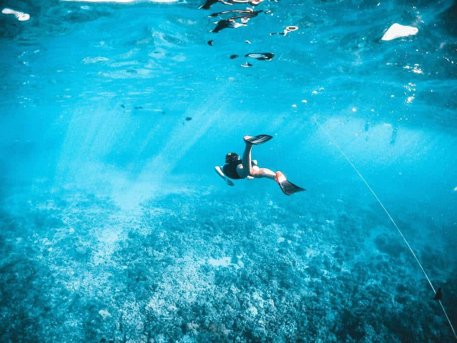 snorkeling at the great barrier reef safe or dangerous