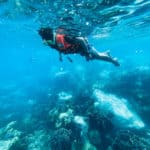 what is drift snorkeling